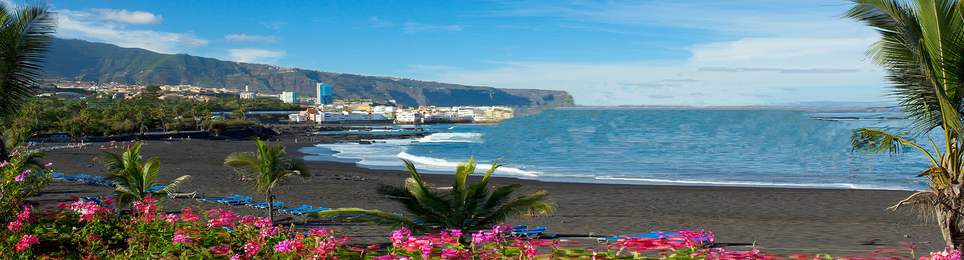 canarie-006